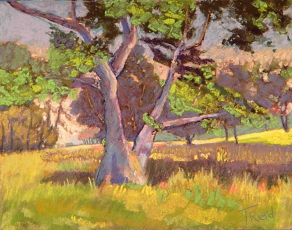"""""""Blue Tree"""" original fine art by Toby Reid"""