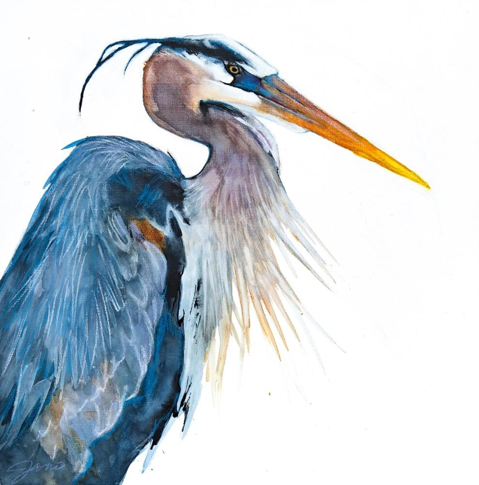 """Great Blue Heron 1"" original fine art by Jani Freimann"