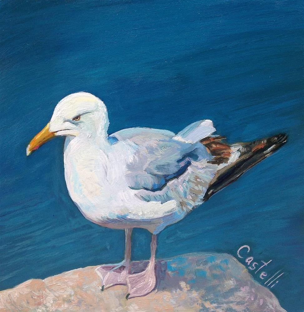 """Gull Watching"" original fine art by Anna Castelli"