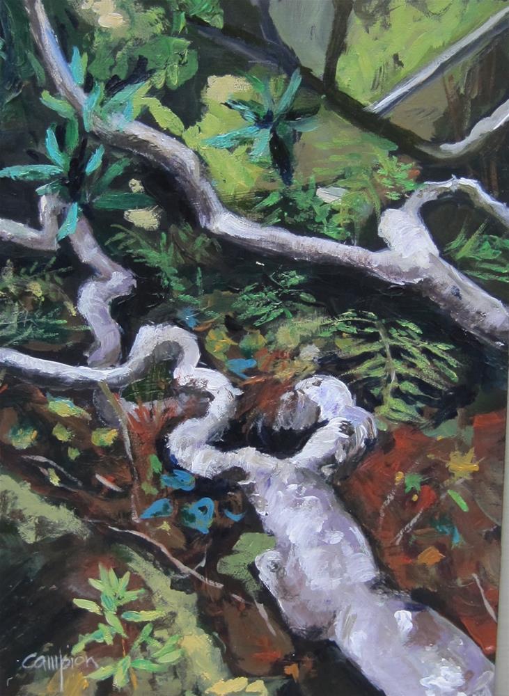 """Along the Path"" original fine art by Diane Campion"