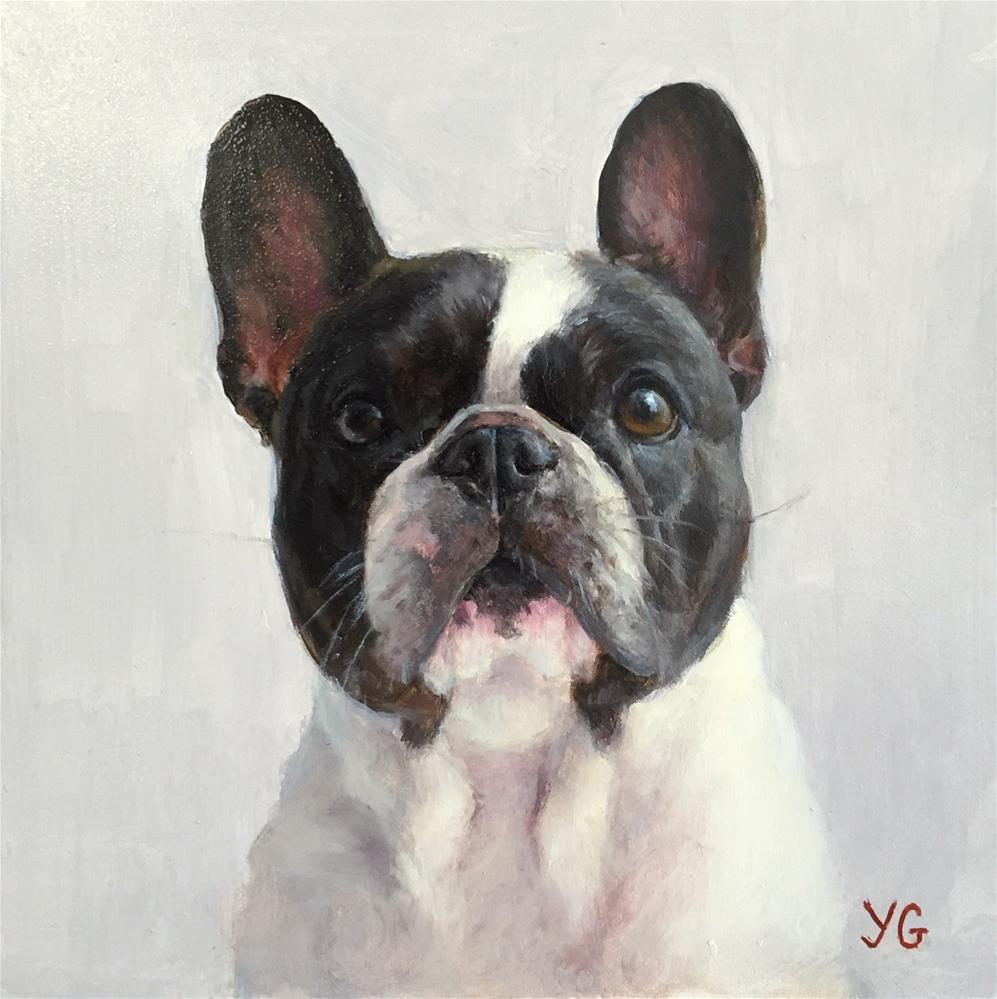 """Bella. Oil dog portrait "" original fine art by Yana Golikova"