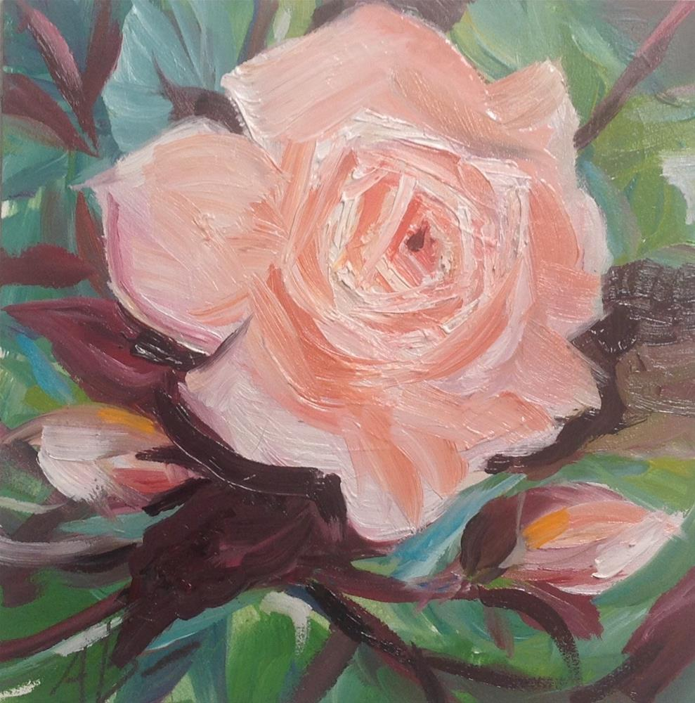 """Pink open Rose"" original fine art by Annette Balesteri"