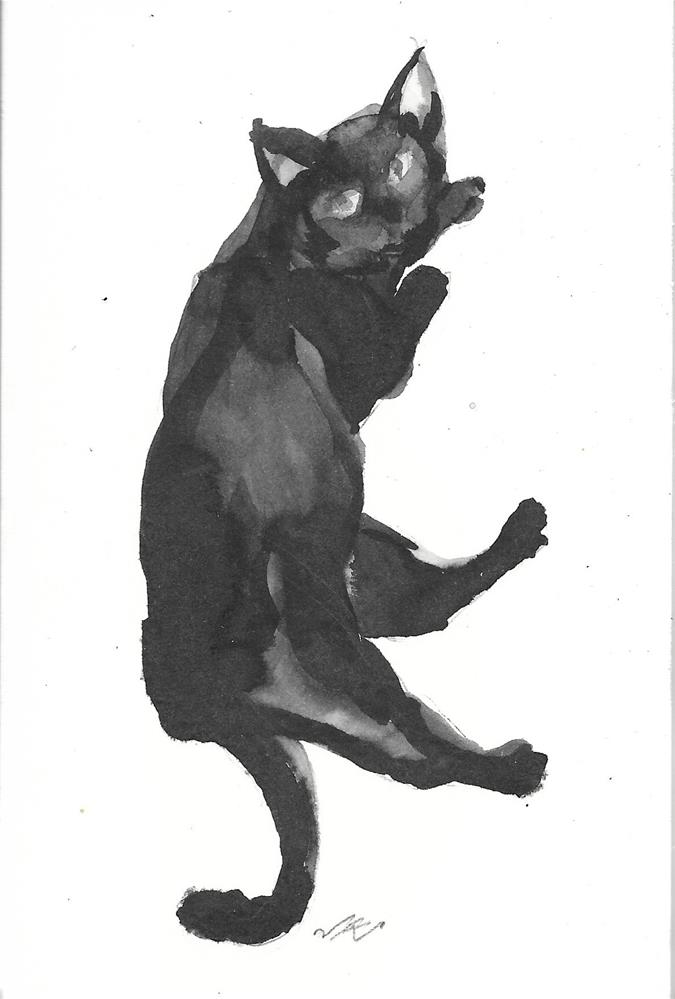 """Daily Cat 50"" original fine art by Jean Krueger"