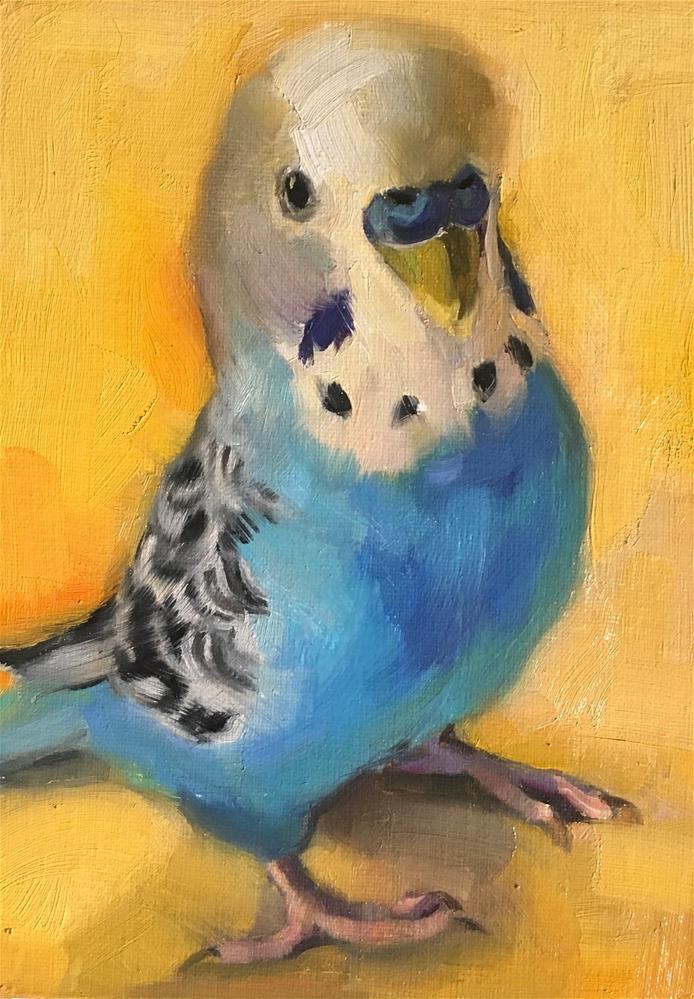 """Budgie68_oil"" original fine art by Katya Minkina"