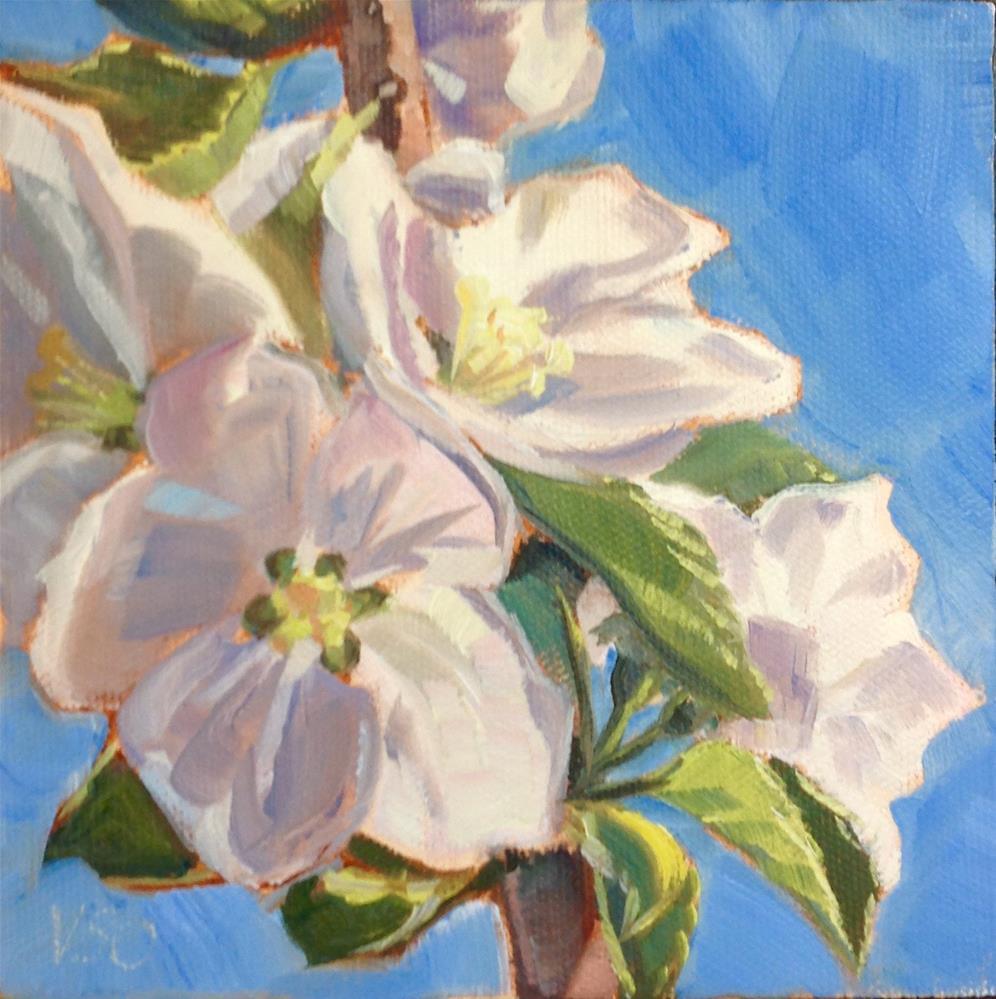 """Apple Blossoms III"" original fine art by Valerie Orlemann"