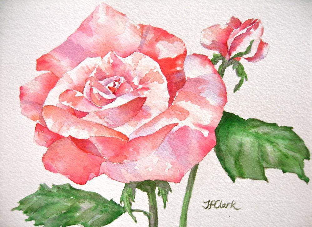 """Sweet Rosie"" original fine art by Judith Freeman Clark"