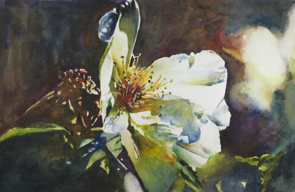 """""""Fading in the Sunlight"""" original fine art by Sue Churchgrant"""