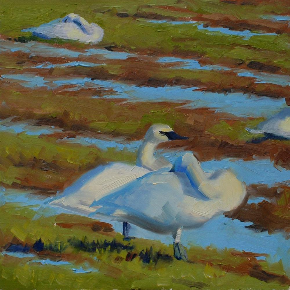 """""""Swan's in Skagit Valley"""" original fine art by Susan McManamen"""