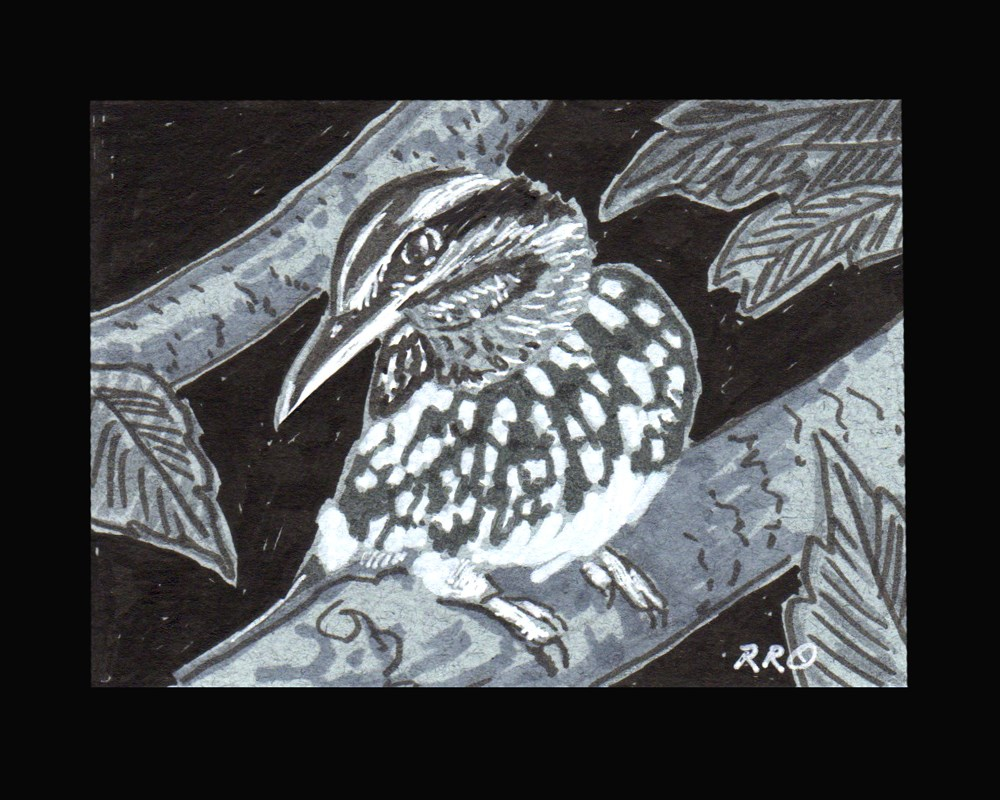 """Speckled Bird"" original fine art by Rhett Regina Owings"