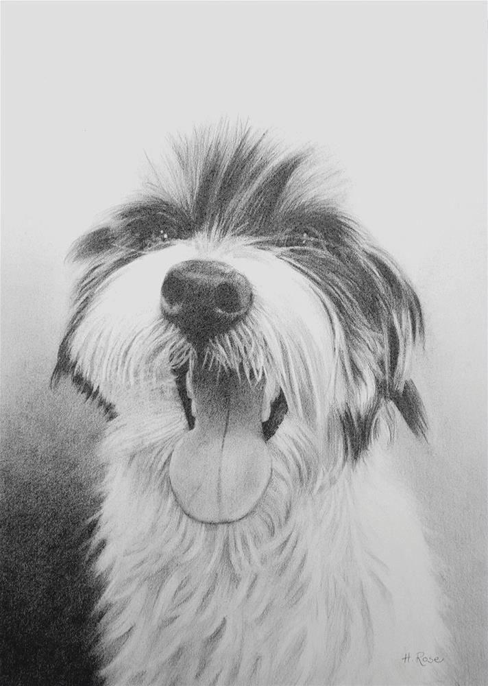 """Charlie"" original fine art by Heidi Rose"