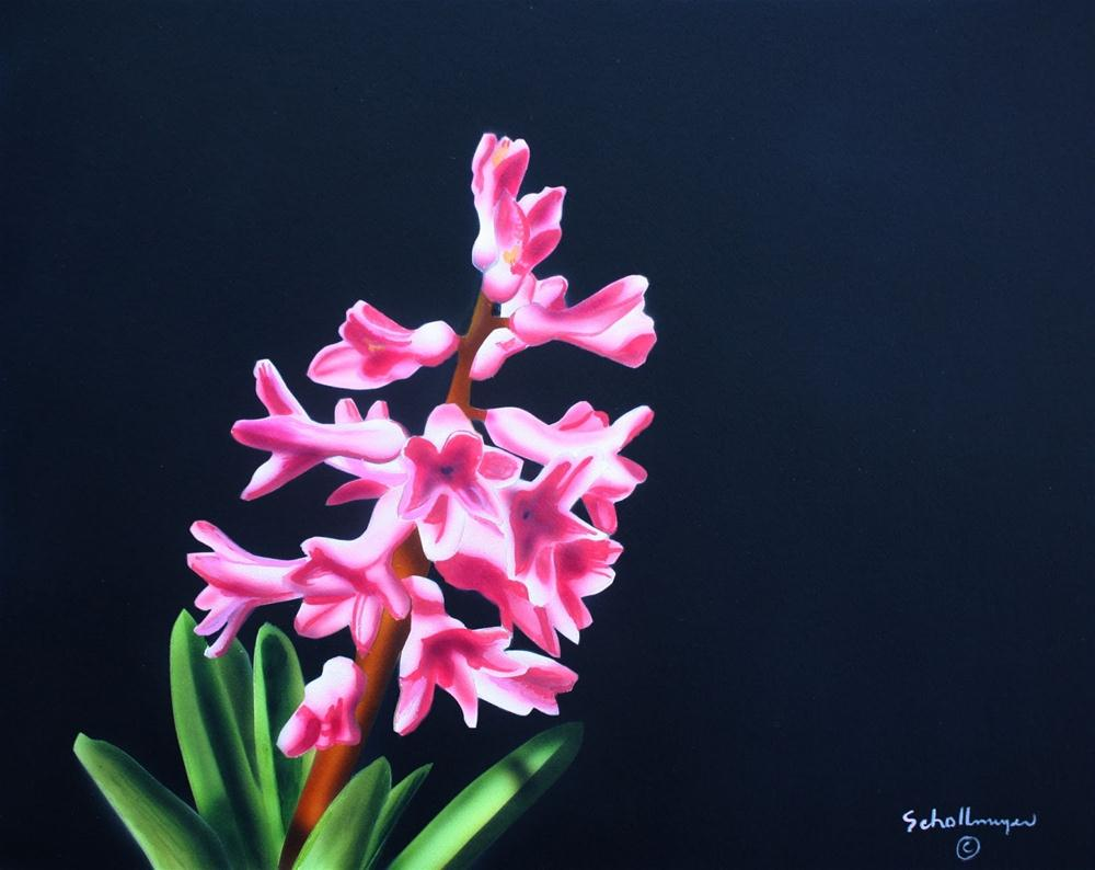 """Early Hyacinth"" original fine art by Fred Schollmeyer"