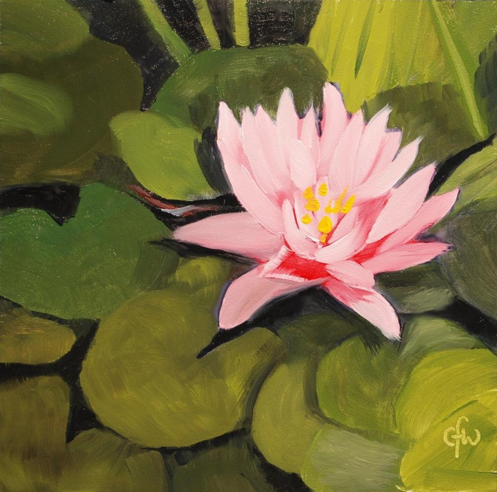 """Pink Pond Lily"" original fine art by Gary Westlake"