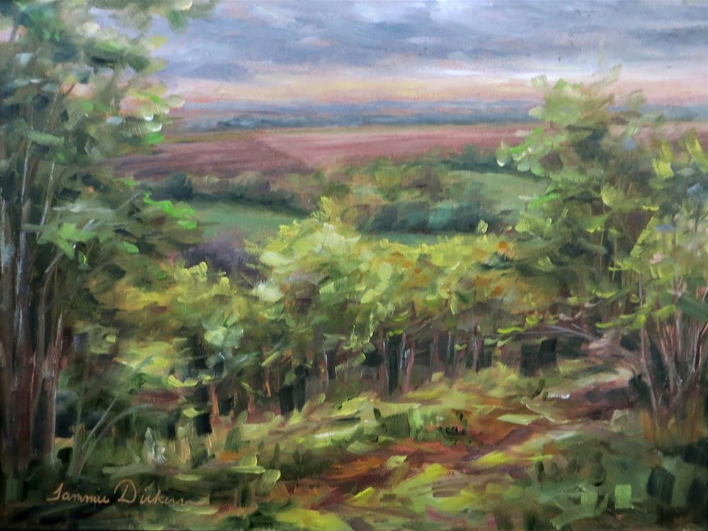 """""""Moody Montelle Morning"""" original fine art by Tammie Dickerson"""