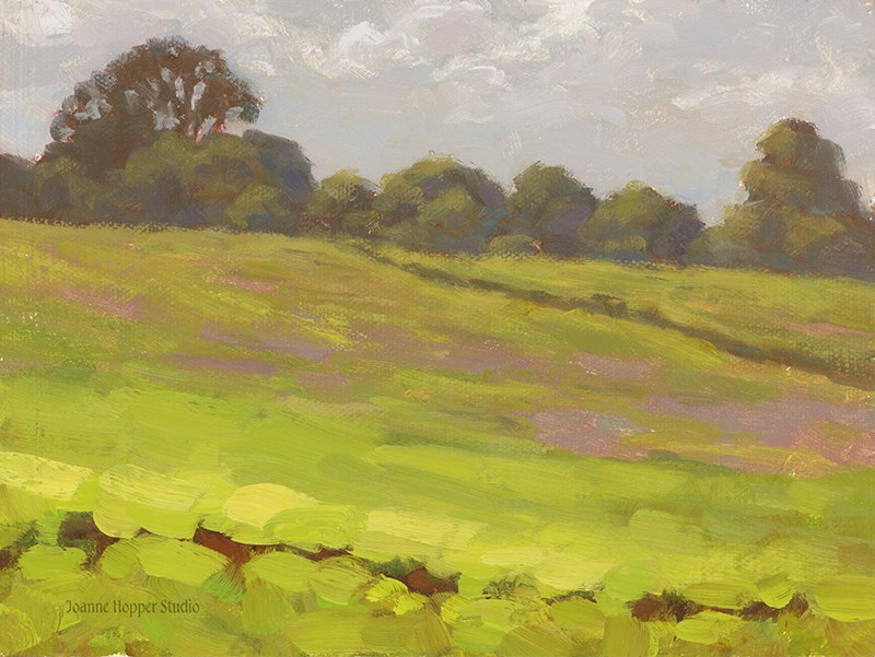"""Pi'iholo Field"" original fine art by Joanne Hopper"