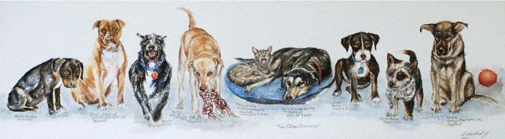 """Too Often Orphaned"" original fine art by Vicki Wood"
