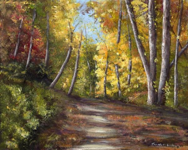 """Autumn Path No 3"" original fine art by Janet Graham"