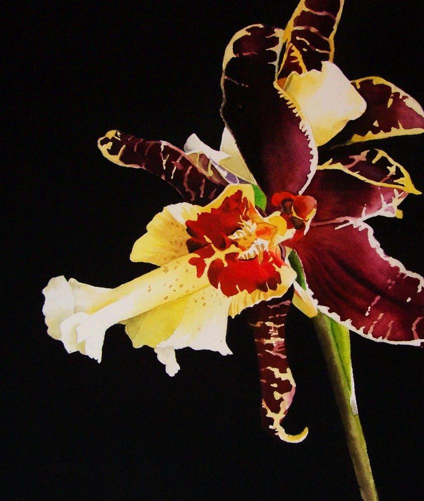 """Tiger Orchid"" original fine art by Jacqueline Gnott, TWSA, WHS"