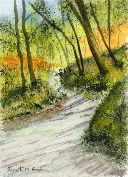 """""""Forest Road ACEO"""" original fine art by Janet Graham"""