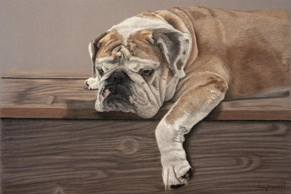 """Willie"" original fine art by Amy Braswell"