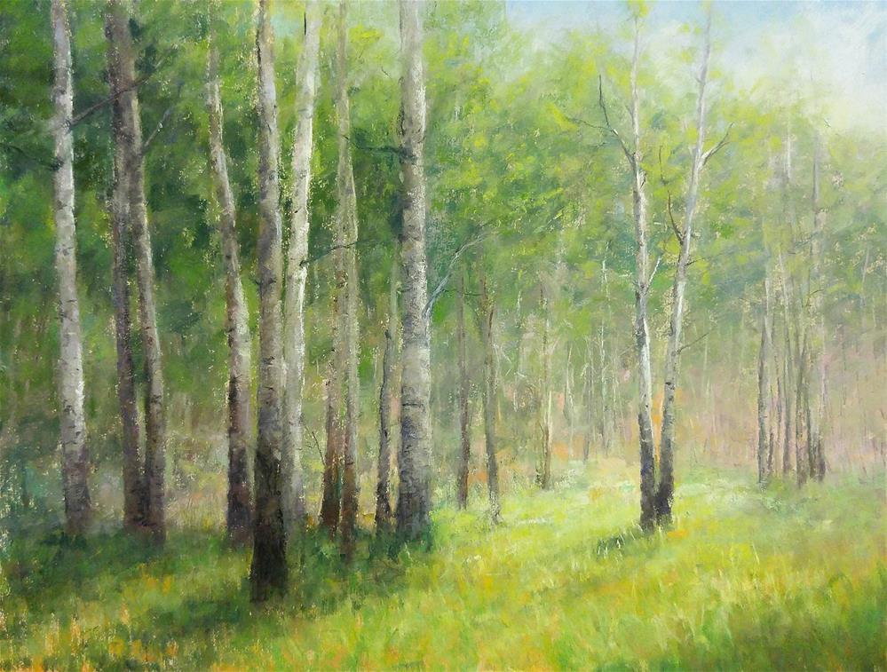 """""""Aspen Meadow"""" original fine art by Nelia Harper"""