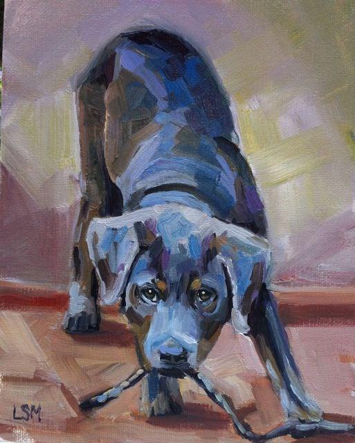 """Playful Gray Pup"" original fine art by Linda Marino"