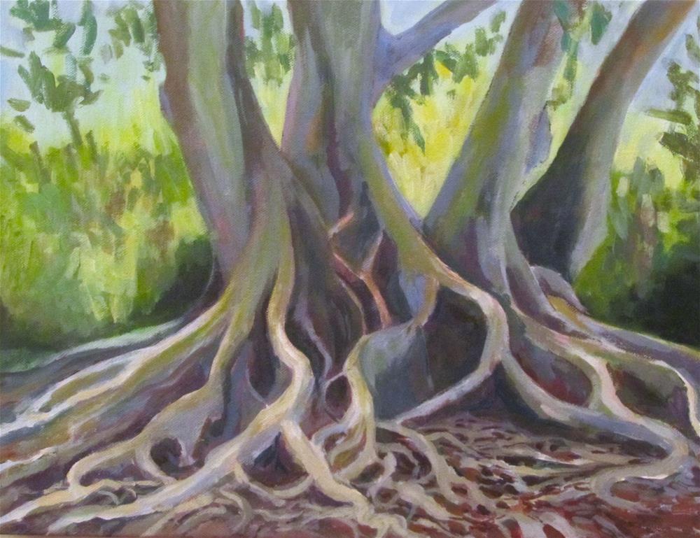 """The Selby Ficus"" original fine art by Patricia MacDonald"