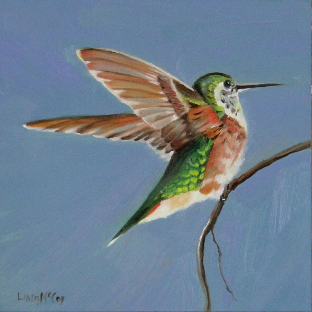 """Illume, Female Rufous Hummingbird"" original fine art by Linda McCoy"