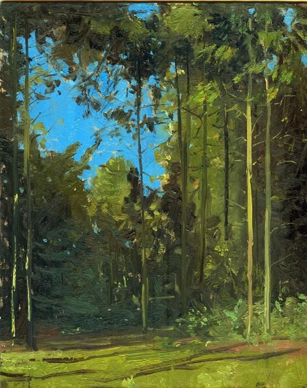 """Peeping Light, Clippesby Hall Trees"" original fine art by Adebanji Alade"