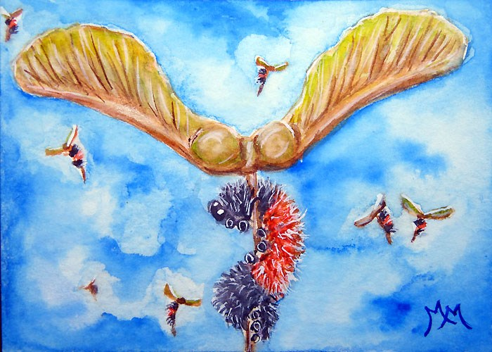 """""""Helicoptering Woolly Worms"""" original fine art by Monique Morin Matson"""