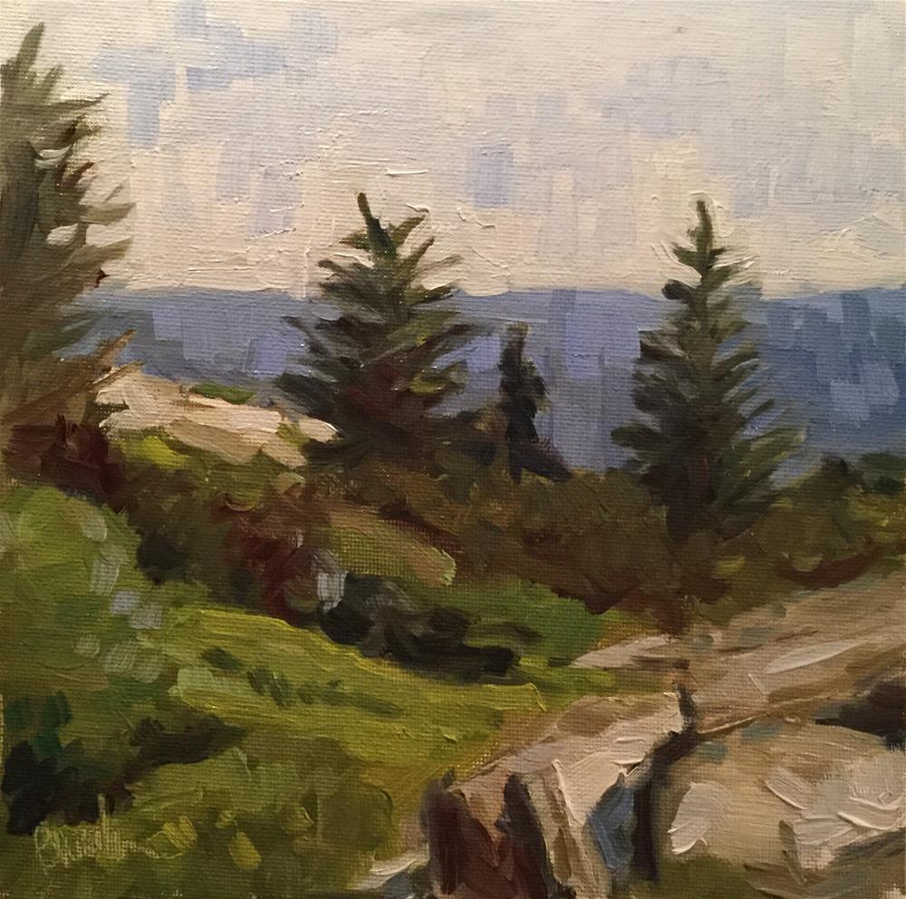 """Cadillac Mountain Blues"" original fine art by Barb Walker"