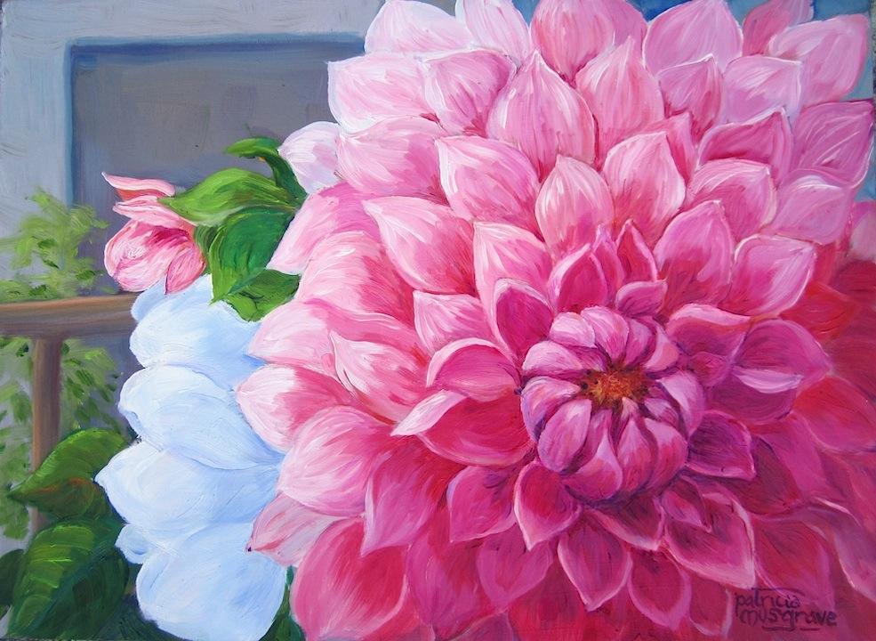 """Pink Dalia"" original fine art by Patricia Musgrave"