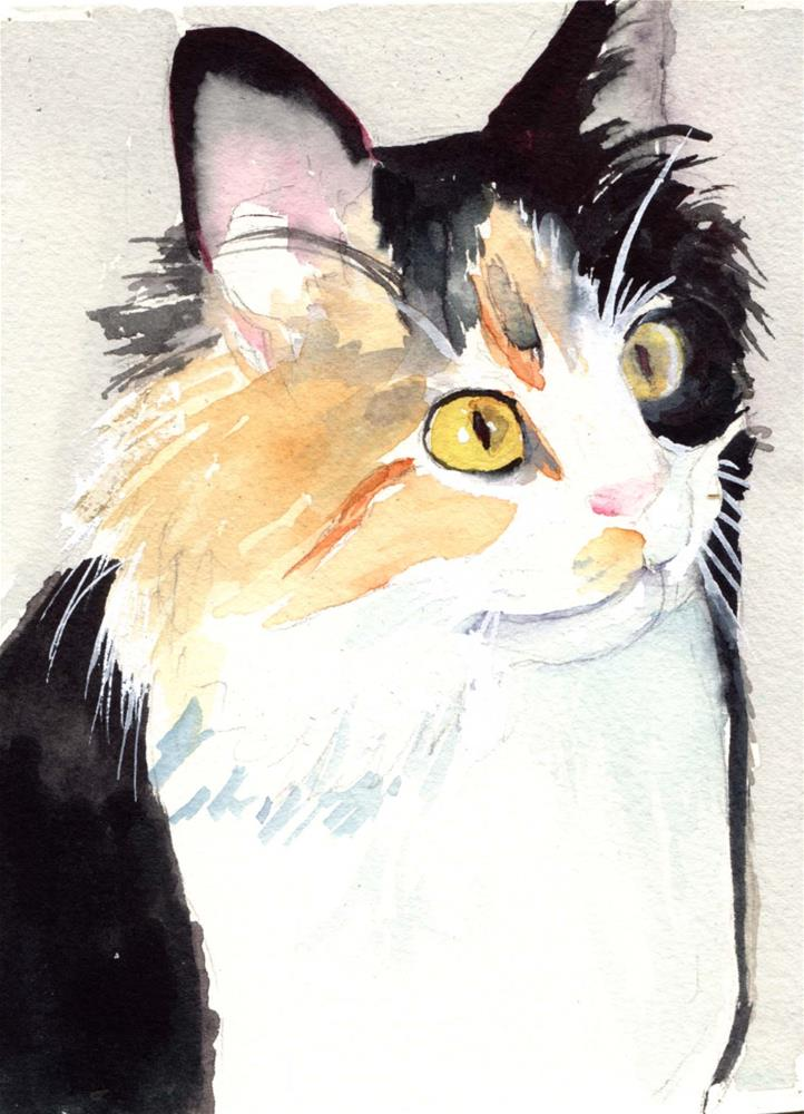 """""""Calico Longhaired Cat"""" original fine art by Bunny Griffeth"""