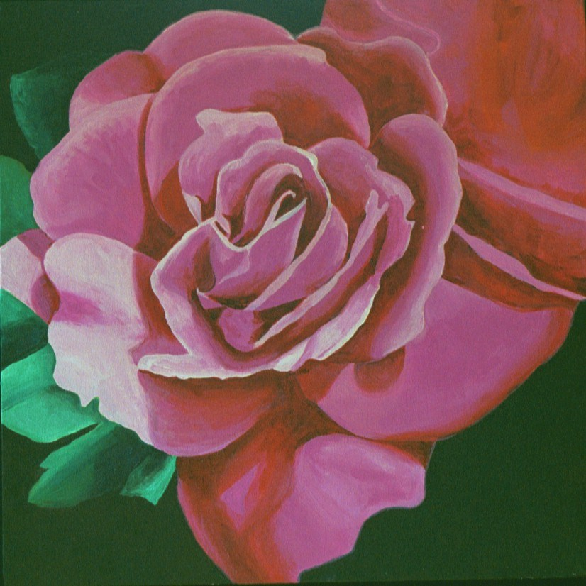 """Rose Study"" original fine art by Lisa Wiertel"