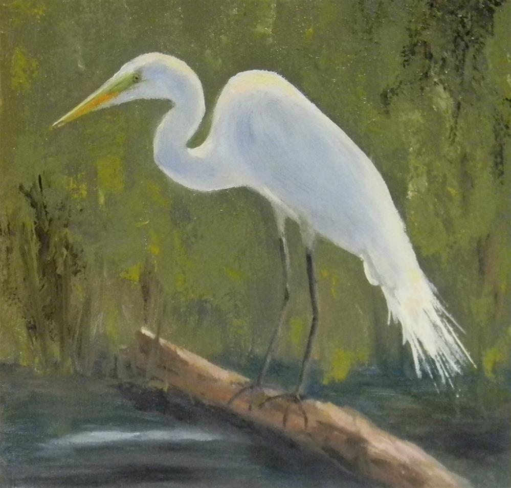 """""""Egret"""" original fine art by Annemiek Haralson"""