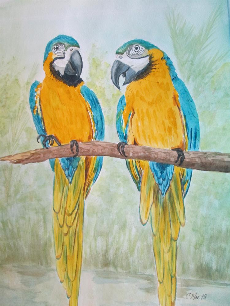 """Chatty Macaws"" original fine art by Chris MacCormack"