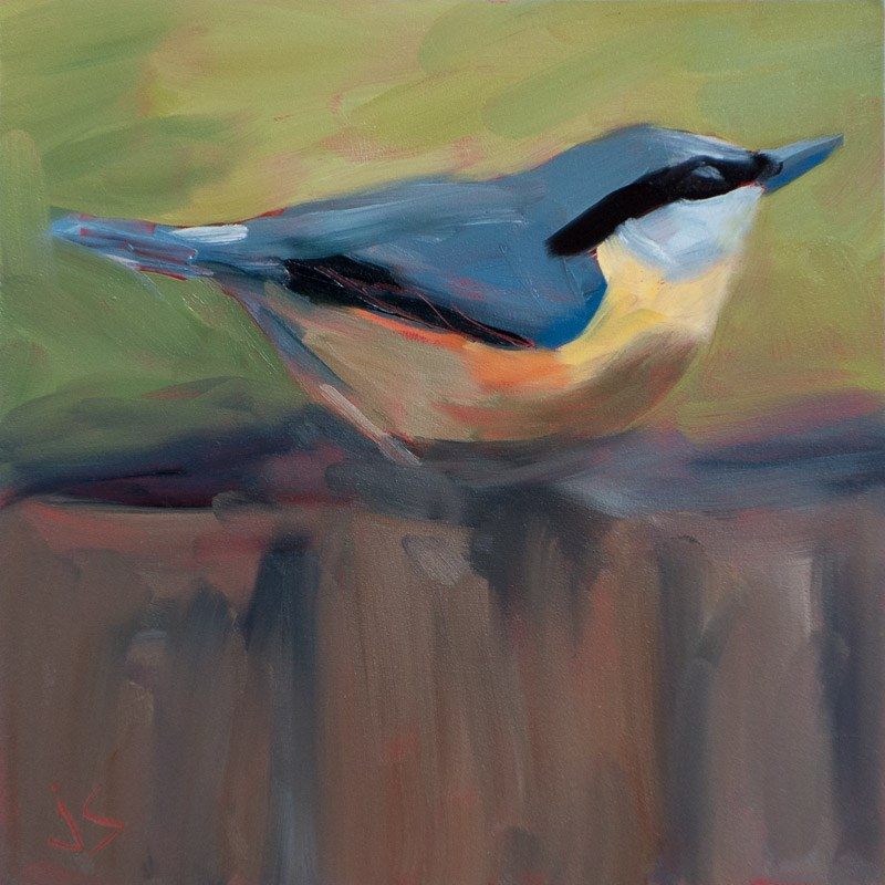 """Red Breasted Nuthatch"" original fine art by Johnna Schelling"