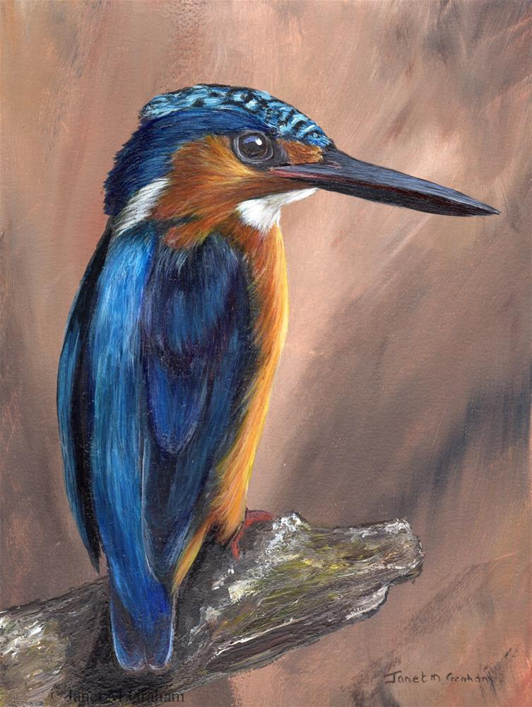 """Madagascar Kingfisher"" original fine art by Janet Graham"