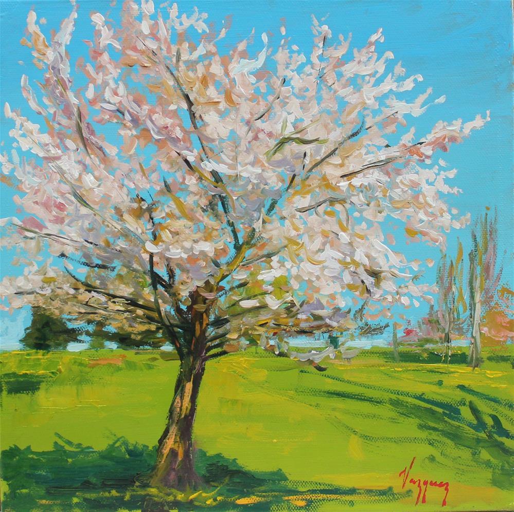"""""""Cherry blossom"""" original fine art by Marco Vazquez"""