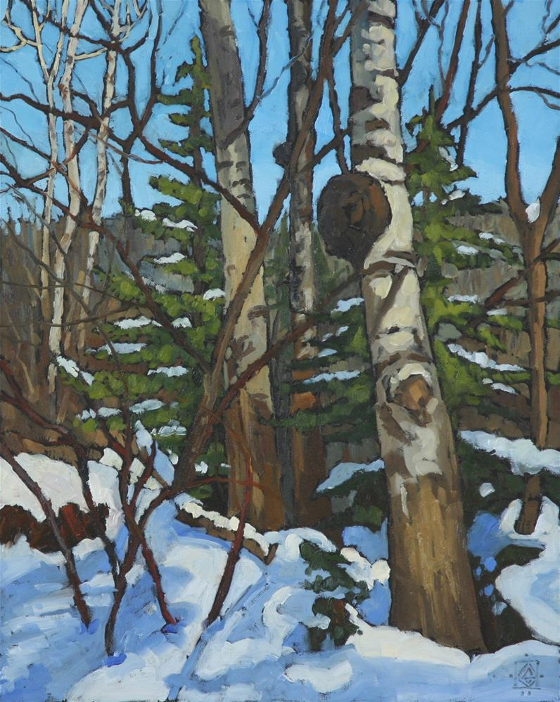 """Winter Aspens"" original fine art by Carol Granger"