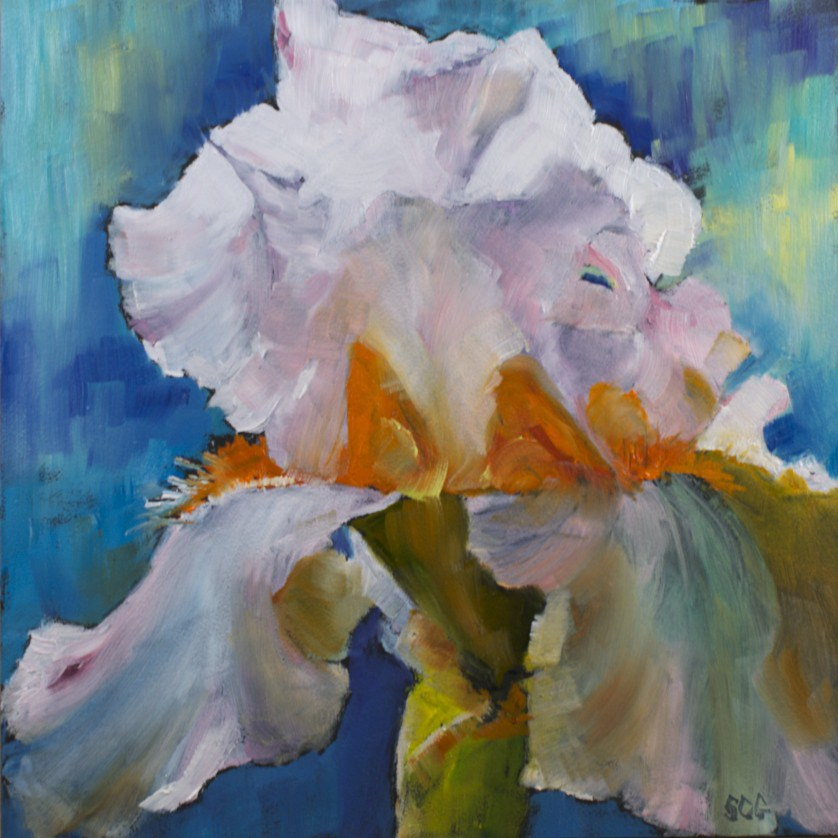 """Iris Study #8"" original fine art by Sue Churchgrant"