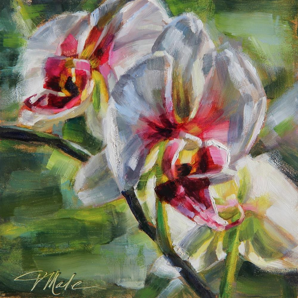 """White Orchid"" original fine art by Tracy Male"