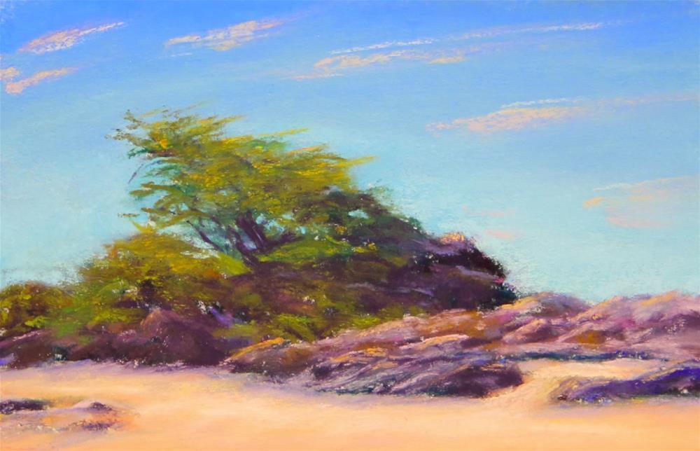 """Windswept"" original fine art by Sharon Lewis"