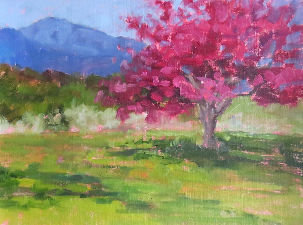 """Spring Blossoms"" original fine art by Pam Holnback"