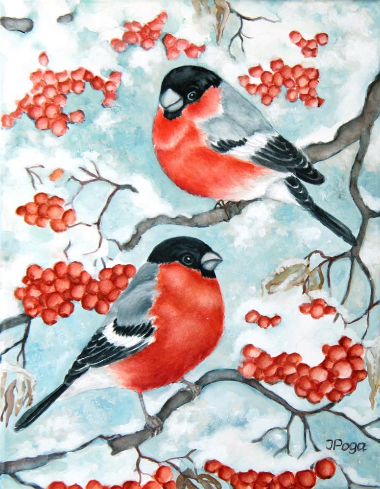 """Redbreast winter bird"" original fine art by Inese Poga"