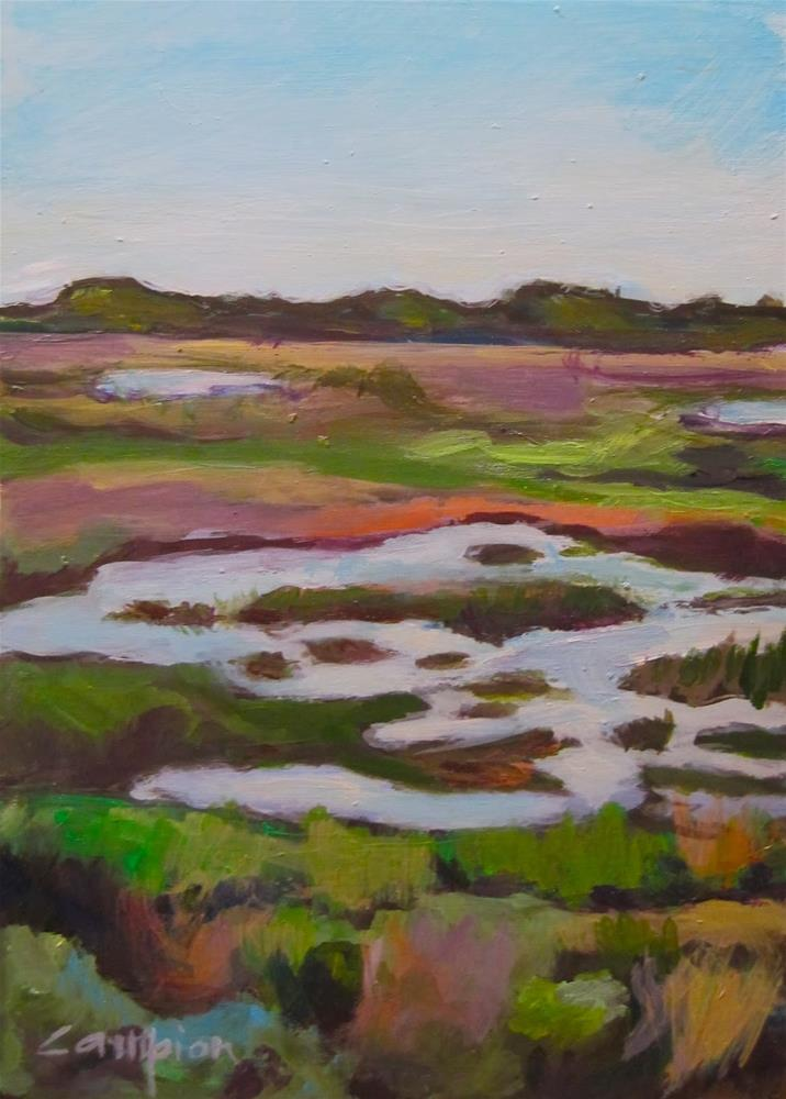 """""""207 The Marsh Stands Alone"""" original fine art by Diane Campion"""
