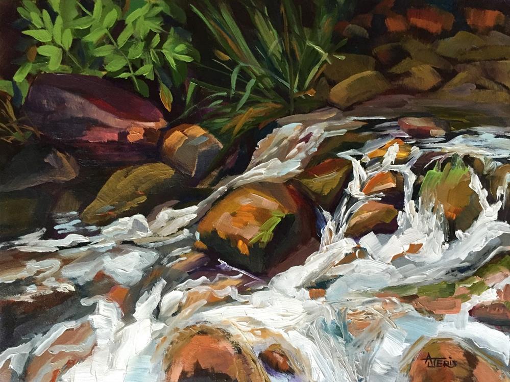 """""""Water on the Rocks"""" original fine art by Andrea Jeris"""