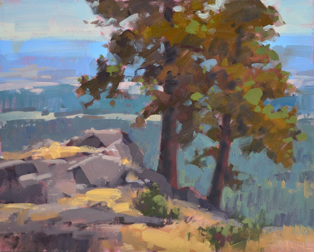 """Top of the World"" original fine art by Carol Marine"