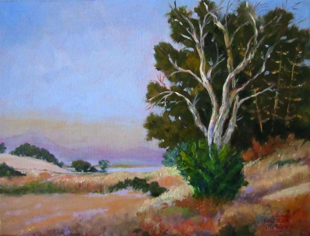 """Bay Area Haze"" original fine art by Patricia Musgrave"