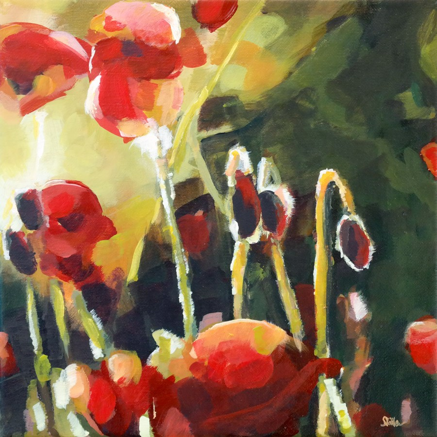 """1053 Poppies"" original fine art by Dietmar Stiller"