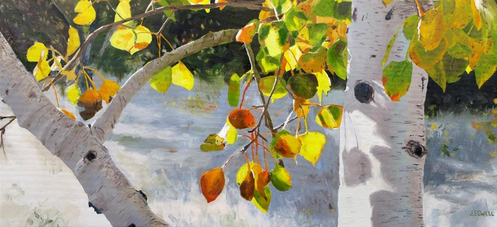 """""""October Shadows - by Josh Sewell"""" original fine art by Andy Sewell"""